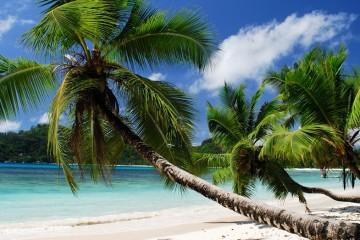 seychellen-beach-1