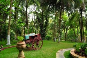 Ayurveda-Kairali-Gren-Luxury-Resorts-II